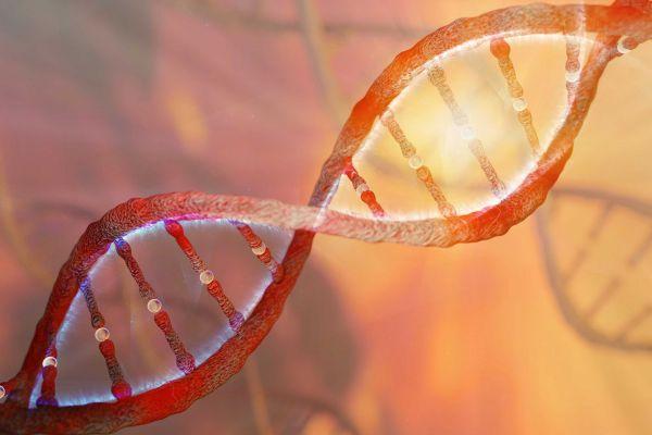 DNA & The Criminal Justice System