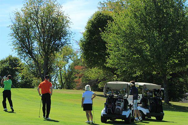 Golf Leagues - Springdale