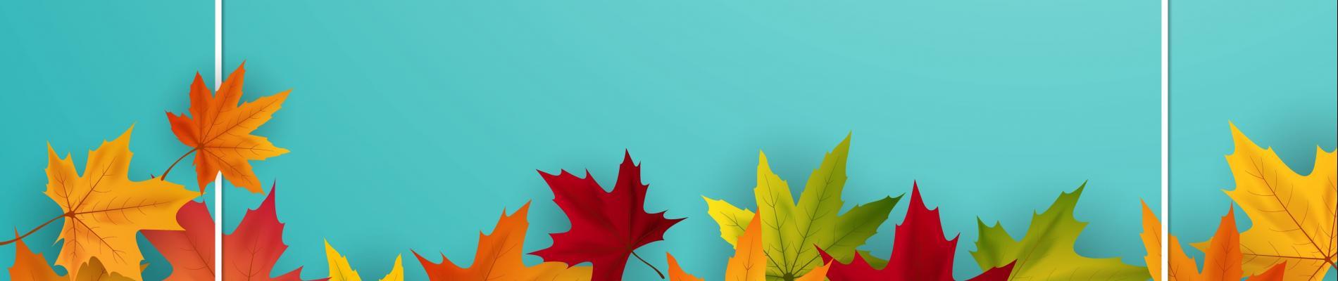 Fall Harvest Social