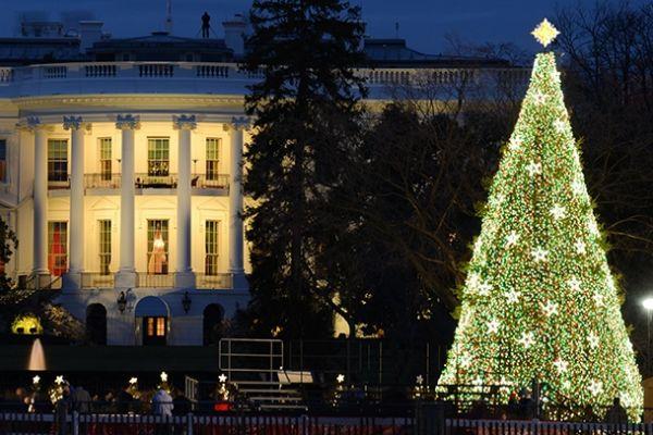 Washington D.C.: A Capital Holiday