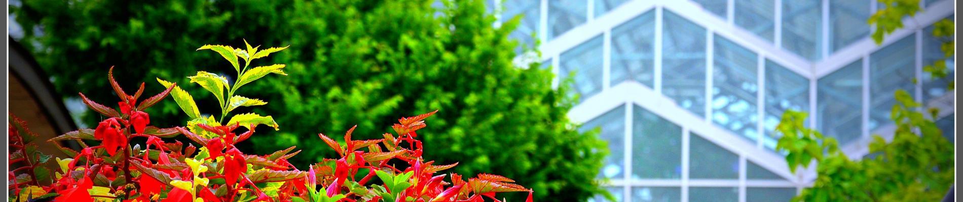 Meijer Gardens & Gerald Ford Museum