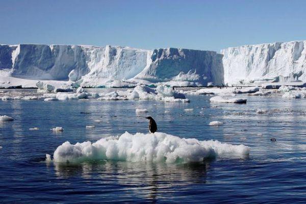 Expedition to Antarctica Travlelogue