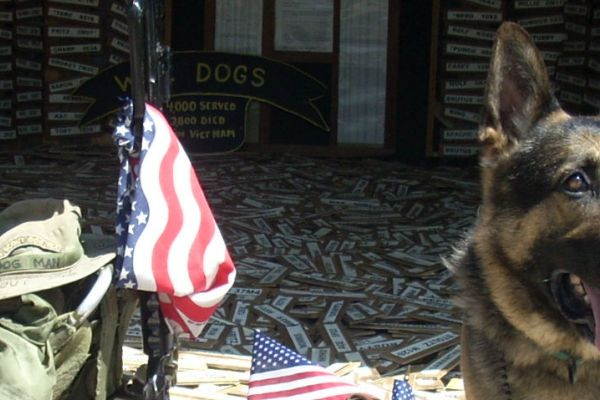 Michigan War Dogs