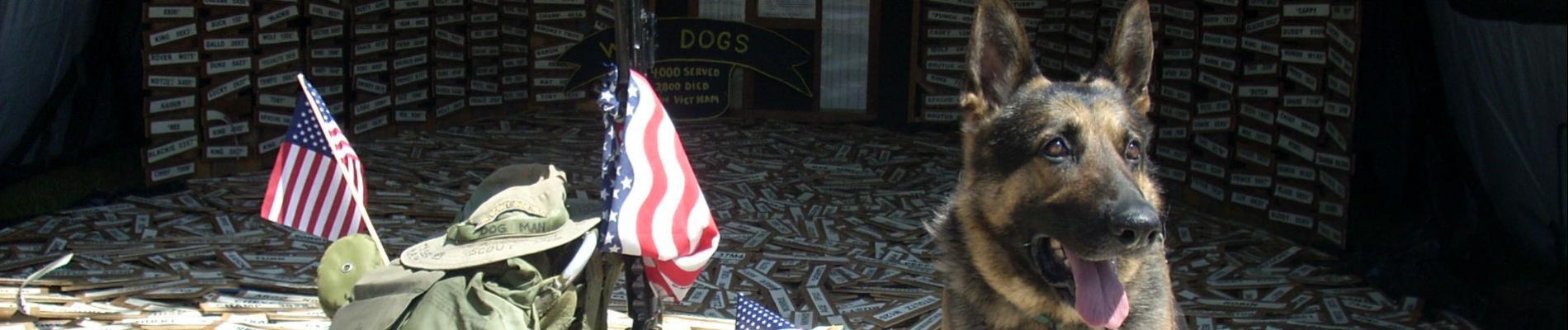 Michigan War Dogs