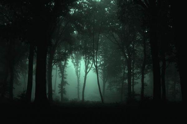 Strange, Spooky, Wicked Michigan